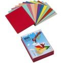 RAINEX Chemises dossier standard 250, pour format A4, rose