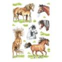 """HERMA sticker DECOR """"races de chevaux"""""""