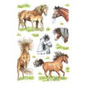 "HERMA Sticker DECOR ""chevaux dessinés"""